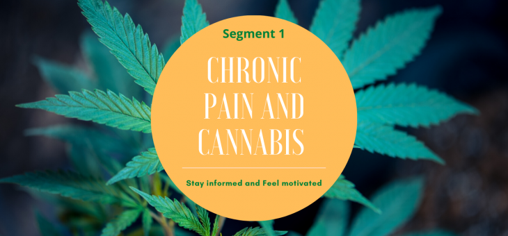 Medical Cannabis for chronic pain, Segment 1